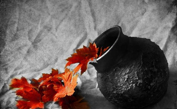 Still-life-photography-black