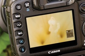 Live View: how to use it on any camera... and when to turn it off