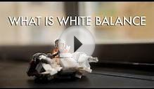 Photography | What is white balance | Episode 10 | Digital